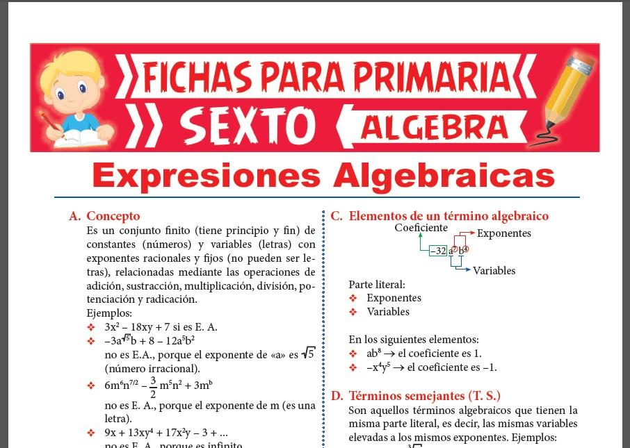 Ficha de Ejercicios de Expresiones Algebraicas para Sexto Grado de Primaria