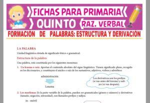 Ficha de Estructura de la Palabra para Quinto Grado de Primaria