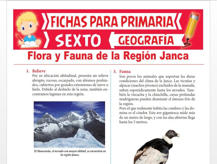 Ficha de Flora y Fauna de la Región Janca para Sexto Grado de Primaria