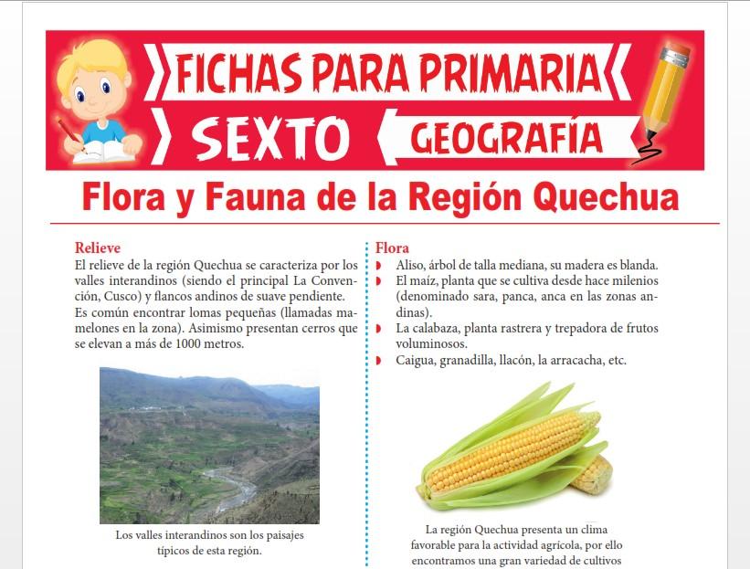 Ficha de Flora y Fauna de la Región Quechua para Sexto Grado de Primaria