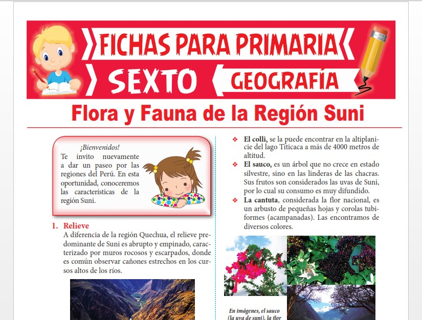 Ficha de Flora y Fauna de la Región Suni para Sexto Grado de Primaria