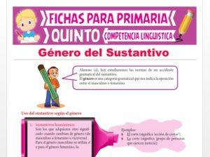 Ficha de Género del Sustantivo para Quinto Grado de Primaria