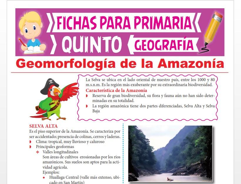 Ficha de Geomorfología de la Amazonía para Quinto Grado de Primaria