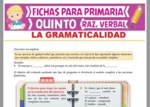 Ficha de La Gramaticalidad para Quinto Grado de Primaria