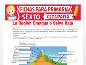 Ficha de La Región Omagua o Selva Baja para Sexto Grado de Primaria