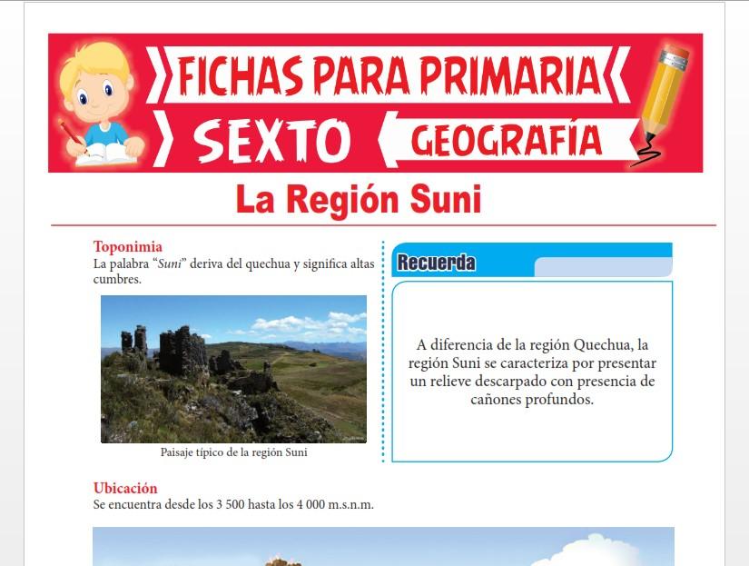 Ficha de La Región Suni para Sexto Grado de Primaria