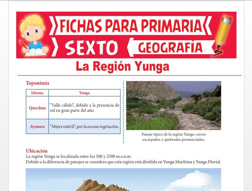 Ficha de La Región Yunga para Sexto Grado de Primaria