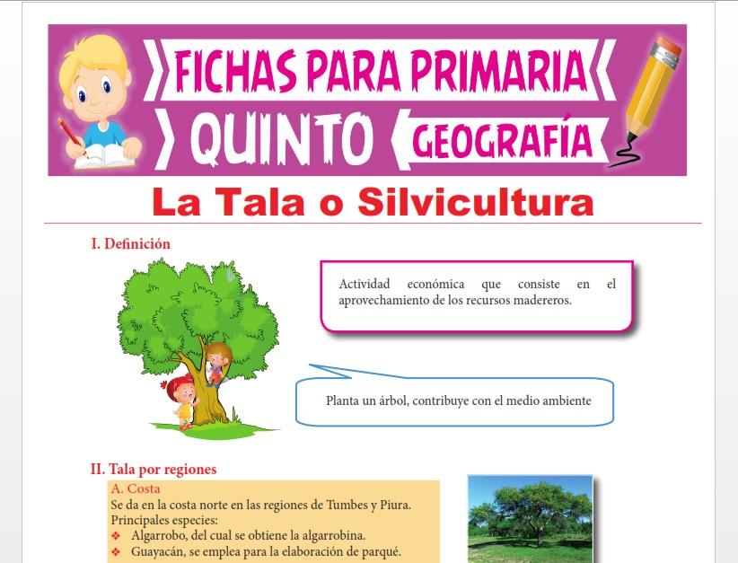 Ficha de La Tala o Silvicultura para Quinto Grado de Primaria