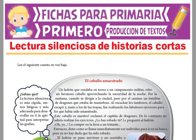 Ficha de Lectura Silenciosa de Historias Cortas para Primer Grado de Primaria