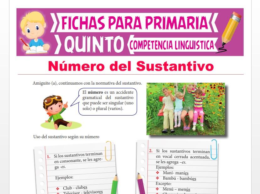 Ficha de Número del Sustantivo para Quinto Grado de Primaria