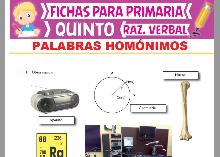 Ficha de Palabras Homónimas para Quinto Grado de Primaria