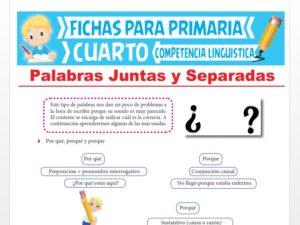 Ficha de Palabras Juntas y Separadas para Cuarto Grado de Primaria