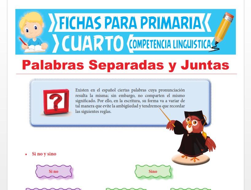 Ficha de Palabras Separadas y Juntas para Cuarto Grado de Primaria