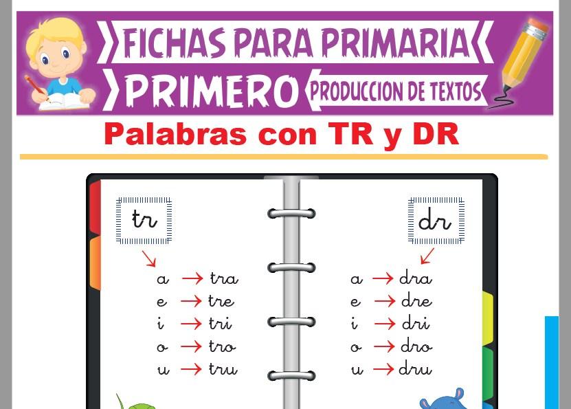 Ficha de Palabras con TR y DR para Primer Grado de Primaria