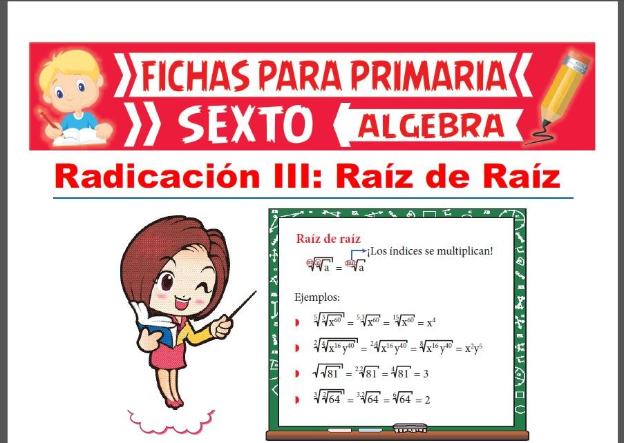 Ficha de Raíz de Raíz para Sexto Grado de Primaria