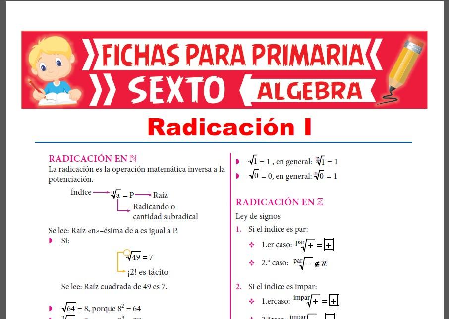 Ficha de Radicación en Números Naturales y Enteros para Sexto Grado de Primaria