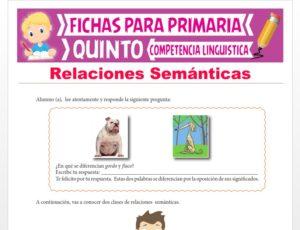 Ficha de Relaciones Semánticas para Quinto Grado de Primaria