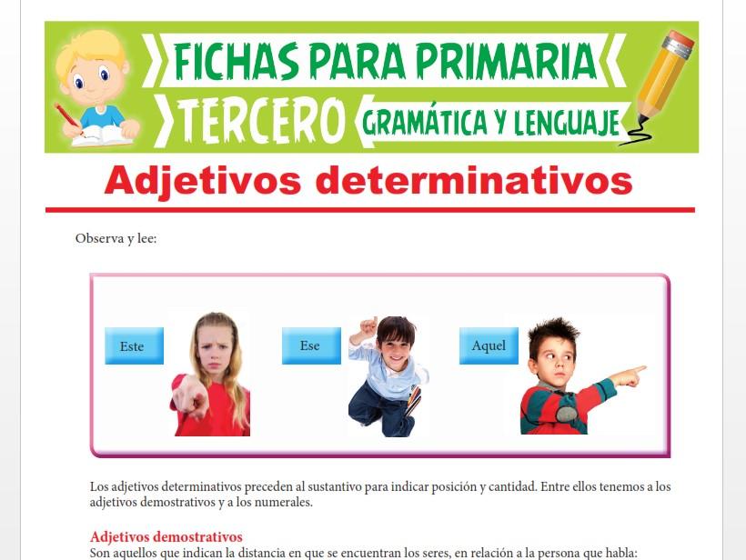 Ficha de Los Adjetivos Determinativos Numerales para Tercer Grado de Primaria