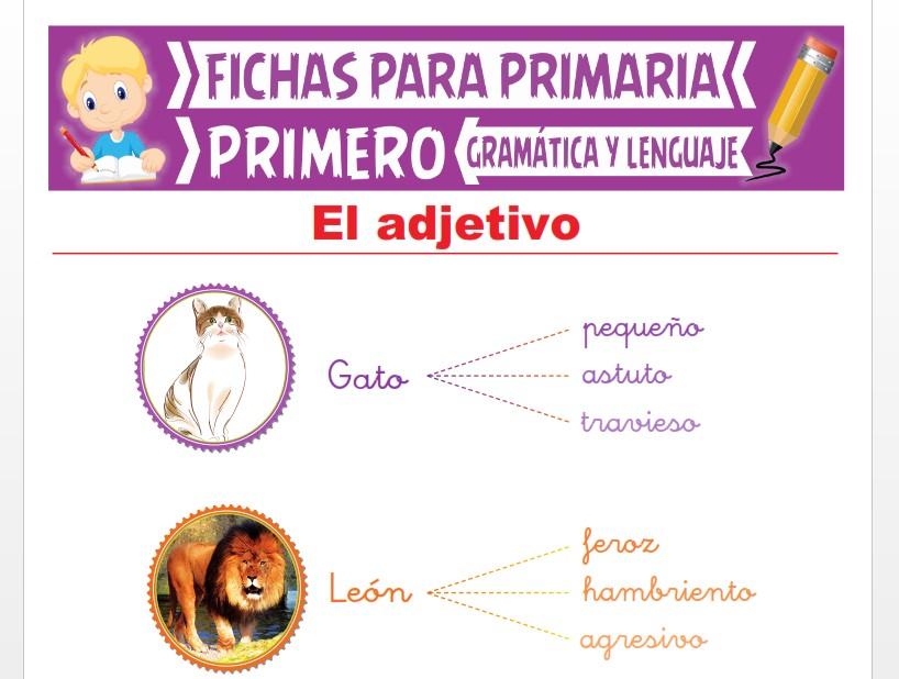 Ficha de Aprendiendo sobre el Adjetivo para Primer Grado de Primaria