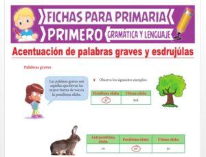 Ficha de Aprendiendo sobre la Acentuación para Primer Grado de Primaria