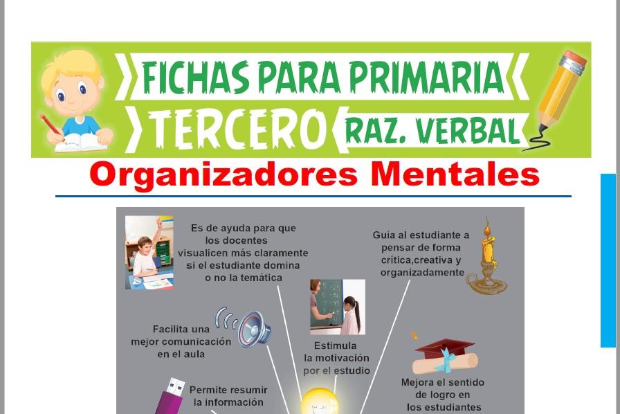 Ficha de Características del Organizador Mental para Tercer Grado de Primaria