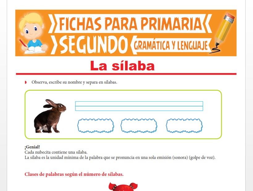 Ficha de Clases y Formación de Sílabas para Segundo Grado de Primaria