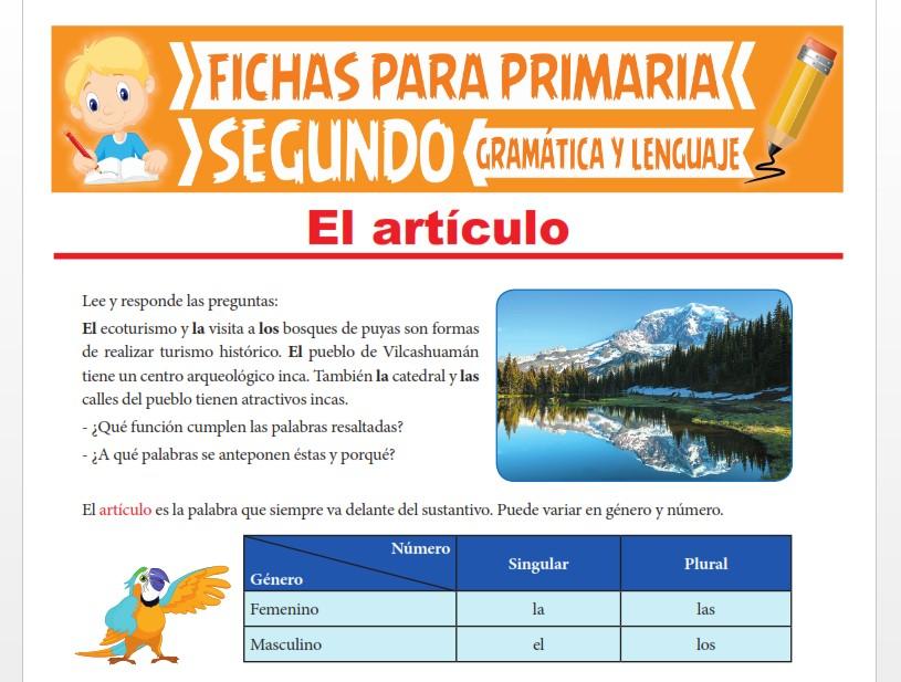 Ficha de Concordancia entre Artículo y Sustantivo para Segundo Grado de Primaria