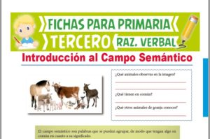 Ficha de Ejercicios del Campo Semántico para Tercer Grado de Primaria