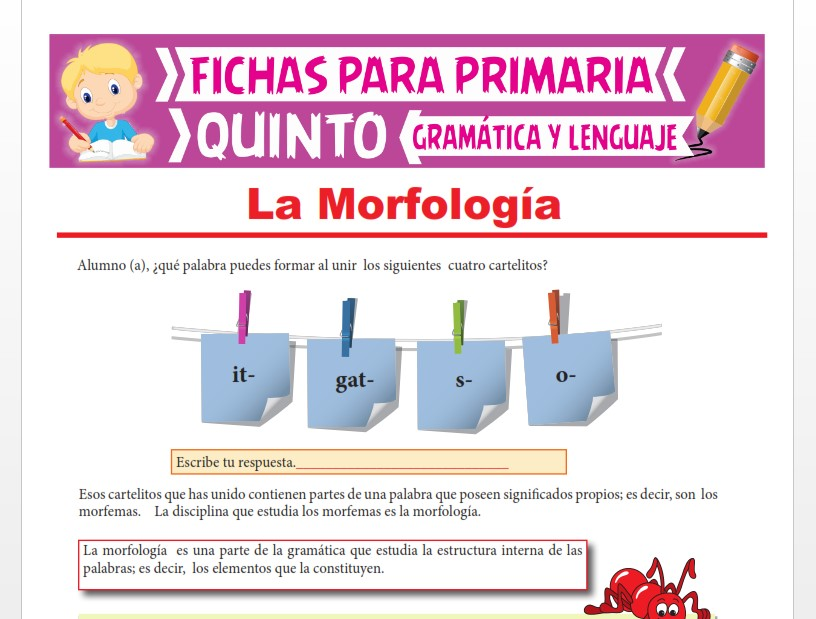Ficha de La Morfología para Quinto Grado de Primaria