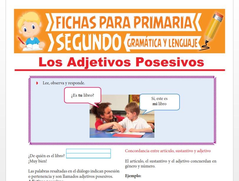 Ficha de Los Adjetivos Posesivos para Segundo Grado de Primaria