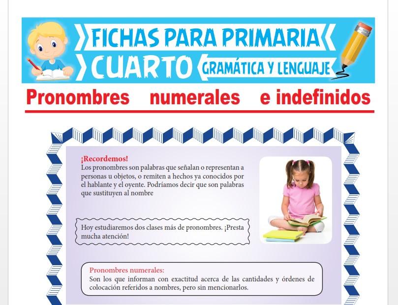 Ficha de Los Pronombres Numerales e Indefinidos para Cuarto Grado de Primaria