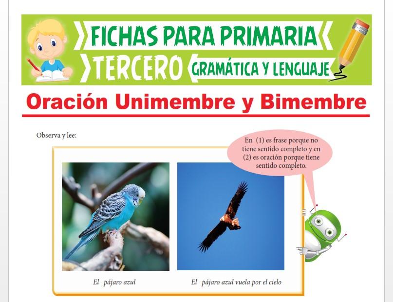 Ficha de Oración Unimembre y Bimembre para Tercer Grado de Primaria