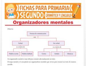 Ficha de Organizadores Mentales para Segundo Grado de Primaria