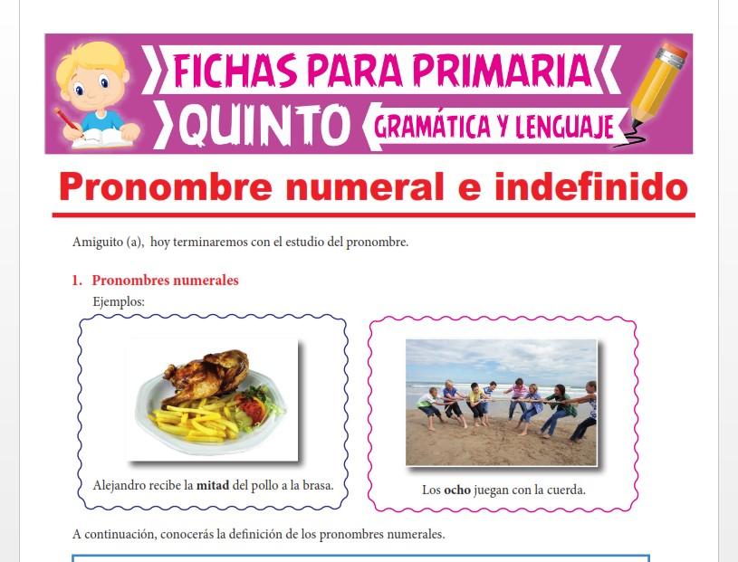 Ficha de Pronombre Numeral e Indefinido para Quinto Grado de Primaria