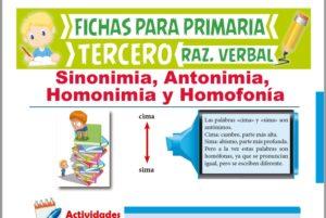 Ficha de Sinonimia, Antonimia, Homonimia y Homofonía para Tercer Grado de Primaria